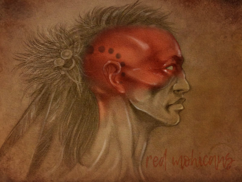 artefacto-red-mohican-001